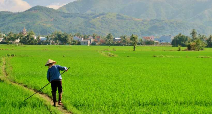 Experience Countryside life from Hanoi - SIC