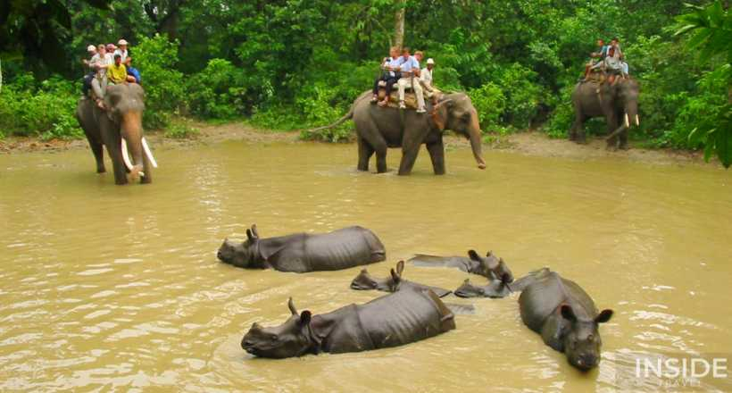 Flavor of Nepal's Nature and Wildlife